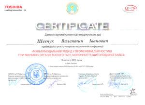 shevchuk-sert5
