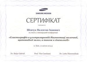 shevchuk-sert8